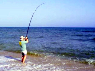 How to catch fish on any beach in the world for How to catch a fish