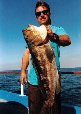 Southern california ocean fishing all about calico bass for Bass fishing san diego